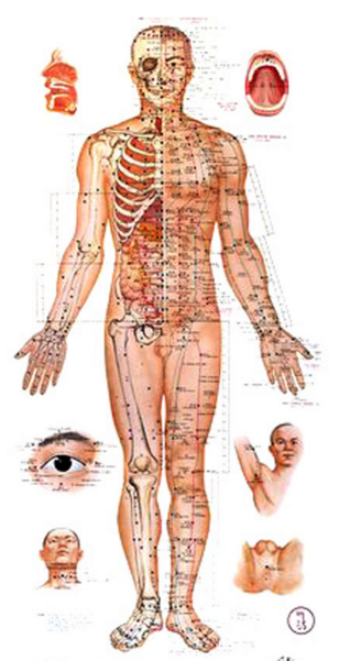 Acupuncture Treatment for Pain